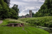 <h5>Fountains Abbey by Rais Hasan</h5>