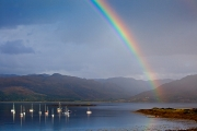<h5>Rainbow Lochcarron by Julia Pigula</h5>