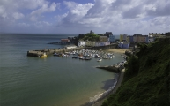 <h5>Tenby Harbour by Stephen Gribbin</h5>