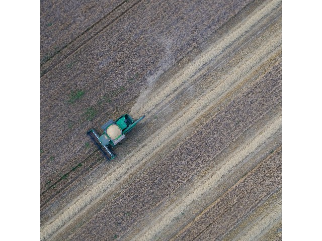 Highly Commended Experienced - The Harvest by Scott Sinden